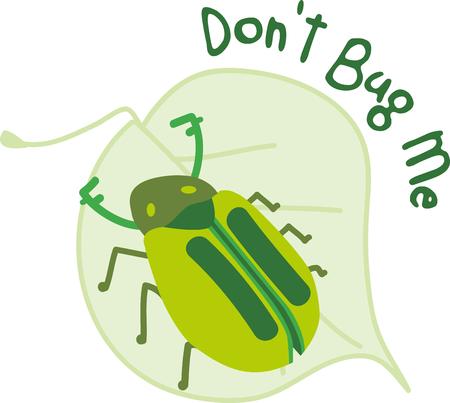 Escoja amplias gamas de escarabajo en la hoja diseñada accesorios especialmente traído a usted por los patrones de bordado! Foto de archivo - 43975578