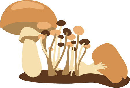 Fuel your family with mushrooms. Mushrooms are a key ingredient in everyday family meals