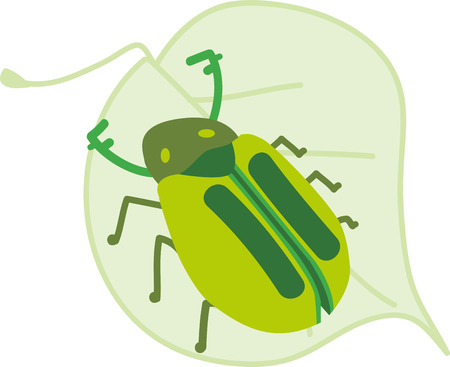 Pick wide ranges of Beetle on Leaf designed accessories specially brought to you by Embroidery patterns