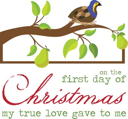 appear: Partridges appear as part of the first gift listed in the Christmas carol
