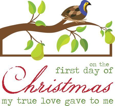Patrijzen weergegeven als onderdeel van de eerste gift in het kerstlied vermeld
