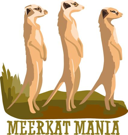 meerkat: Cuddle up to this cute Meerkats designed by Embroidery patterns.