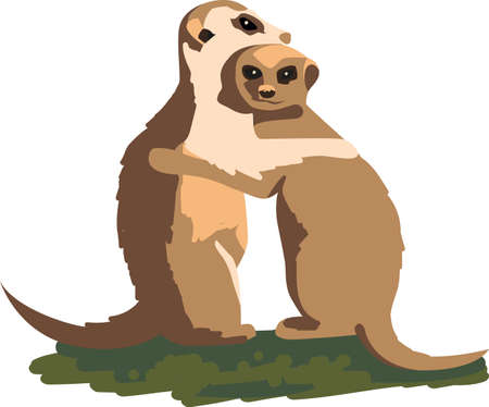 cuddle: So cute couple Made for each other Cuddle up this cute Meerkat couple. Illustration