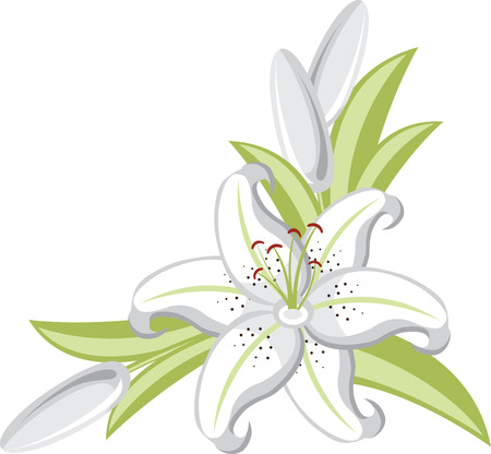 Lily Flowers are elegant and classic choice for your wedding decorations. Ilustracja