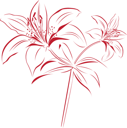 Lily Outline designs are perfect for you to get your body tattooed. Stock Vector - 41568896