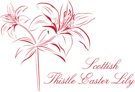 Lily Outline designs are perfect for you to get your body tattooed. Illustration