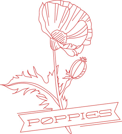Poppy is the name for a group of certain beautiful flowers
