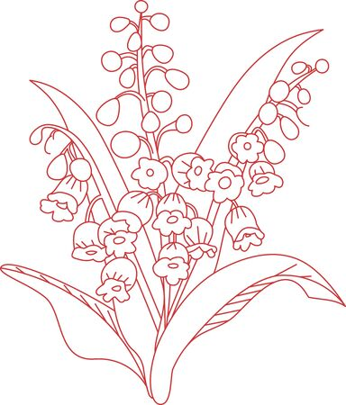 Lily is very beautiful flower which spreads happiness all over Illustration