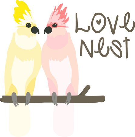 amazon: a pair of romantic wild  cockatoos showing their affection for one another sooooo cute Illustration