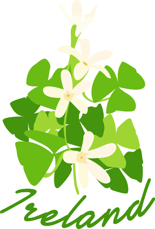 Shamrocks have lovely flowers and greenery.  This colorful design highlights both.