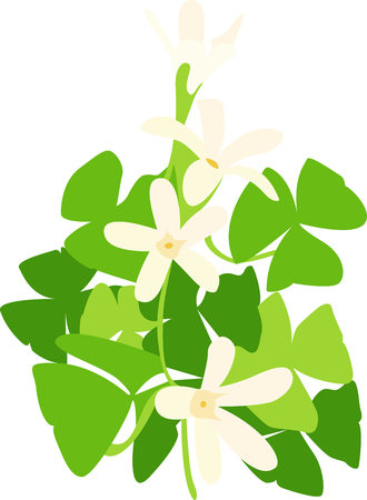 Shamrocks have lovely flowers and greenery.  This beautifully colored design highlights both.