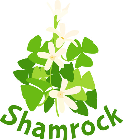 Shamrocks from Ireland are a beautiful way to decorate your tea towels.