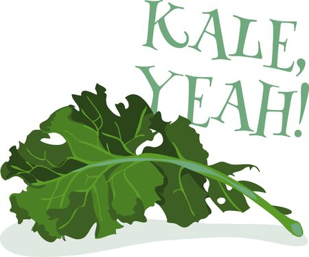 Add this bunch of kale to towels for the kitchen Ilustracja