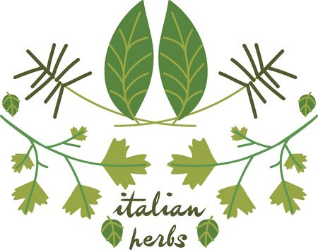 Use these Italian herbs for your favorite cooking.