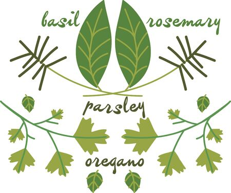 basil leaf: Use these Italian herbs for your favorite cooking.