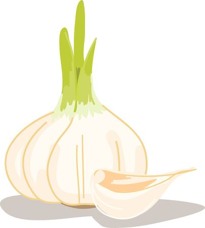 Use this funny garlic design in your kitchen. Ilustrace
