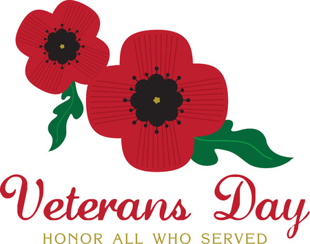 Poppies are often used to celebrate Veterans Day.