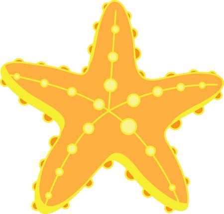 Una estrella de mar es un gran diseño de la playa. Foto de archivo - 42344476