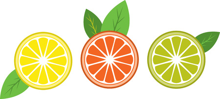 fruit tree: Add a pinch of tanginess to life, with these citrus designs. These would look great on your household  kitchen fabric.