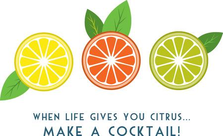 citrus tree: A�adir una pizca de tanginess a la vida, con estos dise�os de c�tricos. Estos se ver�a muy bien en su tela de cocina del hogar. Vectores