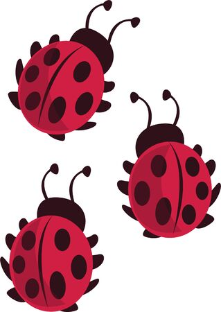 Get bitten by the lady bug, with this girly design on your T-shirts, handbags  other fashion accessories.