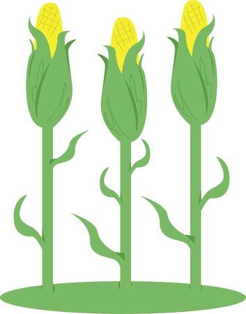 the kernel: A light wind swept over the corn, and all nature laughed in the sunshine. Illustration