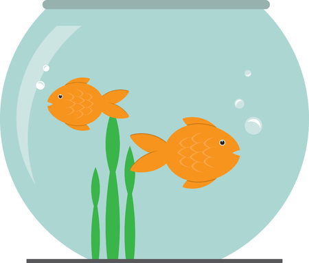 World is a Fish bowl. Just keep on swimming!