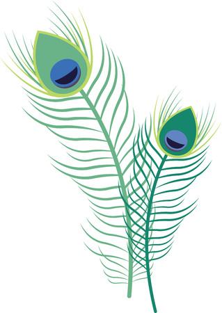 공작의 깃털은 자연에서 가장 아름다운 작품 중 하나입니다. 일러스트