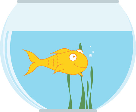 colorful fish: Decorate your home  with colorful  fish bowl. Pick those designs by embroidery patterns. Illustration