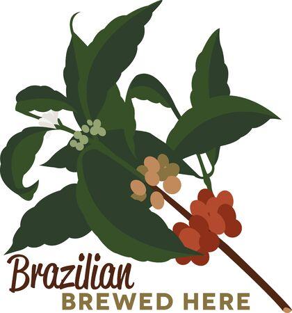 planta de cafe: Utilice esta planta de café de la camisa de un barista o delantal.