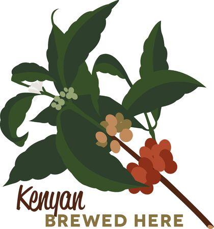 planta de cafe: Utilice esta planta de caf� de la camisa de un barista o delantal.
