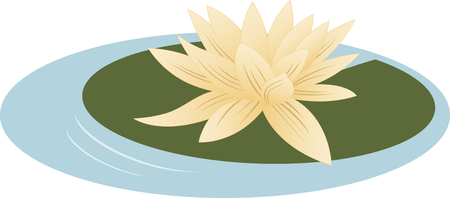 Enjoy the exotic view of beautiful water lilies floating in your pond.