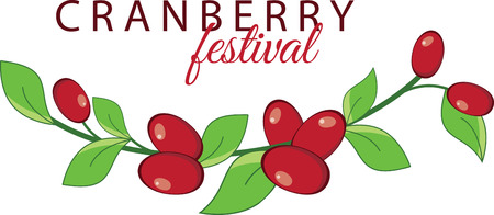 cranberries: Create a splendid look for summer with tasty cranberries on place mats and linens!
