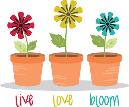 uplifting: You can plant bulbs in pots in the autumn and enjoy uplifting spring flowers.