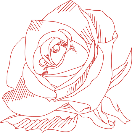 Everyones favorite flower in a beautifully shaded design.  Our lovely rose will certainly add an element of beauty to any project.