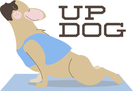 would: This yoga dog would be perfect to add to your bag or towel for class.