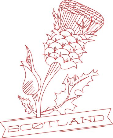 Thistle is the name for a group of lovely flowers. This redwork image is perfect on your next design.  Perfect on an apron