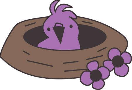 animal shelter: Bird in the nest