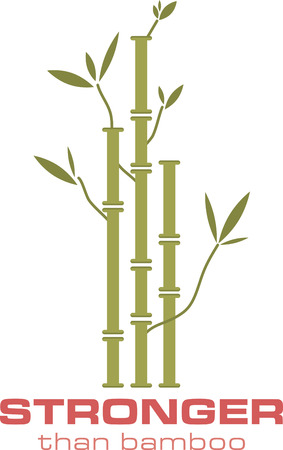 bamboo plant: bamboo plant