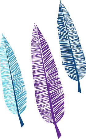 Colourful feather Ilustrace