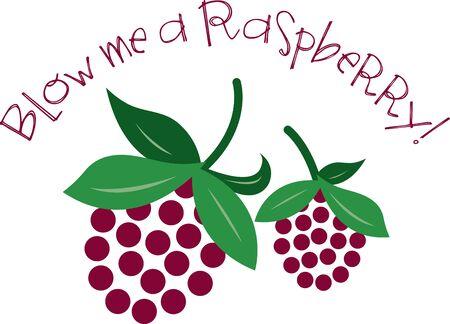 raspberries: Delicious raspberries