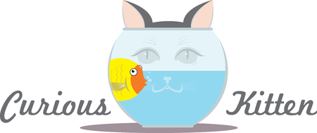 water tanks: Here is a great photo of a curious kitten checking out his little friend in water. Illustration