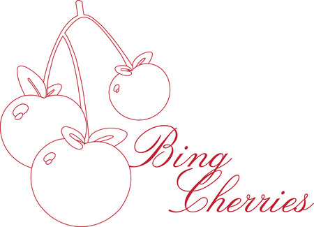 drupe: Enjoy the colorful cherry outline designs by embroidery patterns. Perfect on towels for the kitchen.