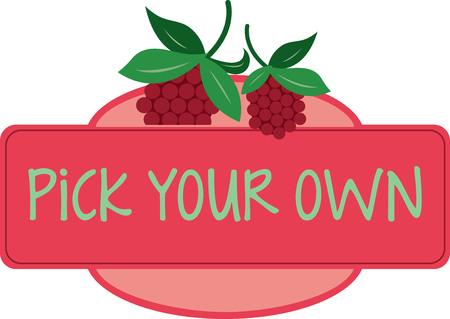 Maak een prachtige look voor de zomer met smakelijke frambozen op placemats en beddengoed!