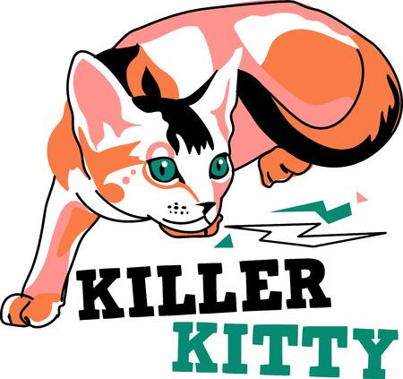 abyssinian: Illustration of cat  Illustration