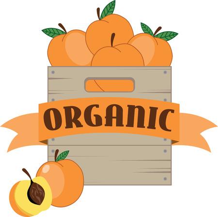 Delicious peaches