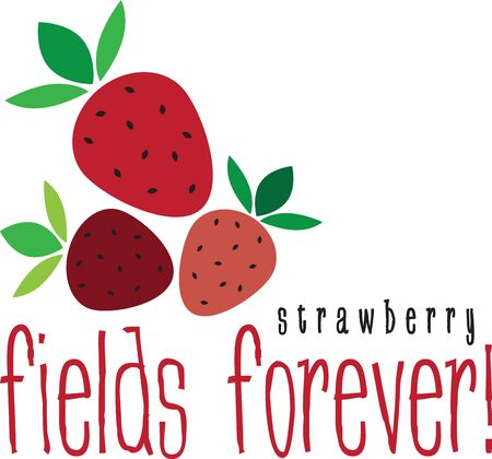 Maak een prachtige look voor de zomer met lekkere aardbeien op placemats en beddengoed! Stockfoto - 42988321