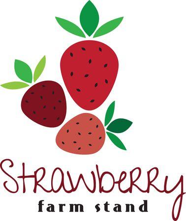 Maak een prachtige look voor de zomer met lekkere aardbeien op placemats en beddengoed!