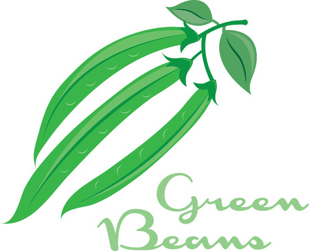 green plants: These elegant green beans will be a sweet touch to kitchen linens. Illustration