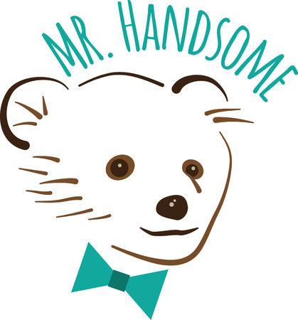 spiffy: This huggable bear is looking spiffy with his bowtie.  A lovable design to make a perfect gift every time for any occasion!